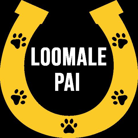 LOOMALE PAI